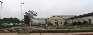 berryville school garden (15)