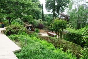 coulson garden.may1622