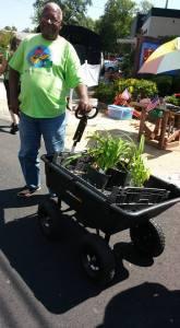 mg plant sale eldorado.16