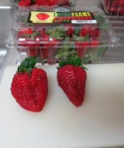 strawberries may6.161