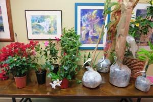 tropical workshop garvan may16 (3)