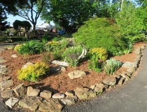 van buren county mg plant sale 16 (12)