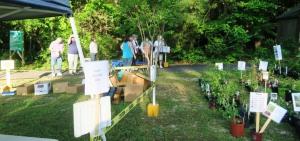 van buren county mg plant sale 16 (22)