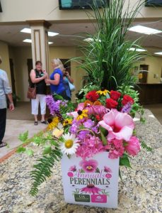 annual to perennial june21 (20)