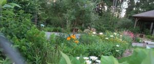 south ark arboretum04