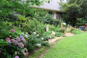 my garden mulched july4.163