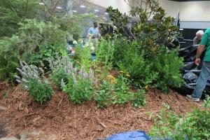 nacaa garden july16 (8)