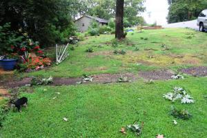 storm damage july16 (5)