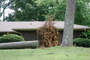 storm damage july16 (7)