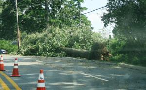 storm damage july16 (8)