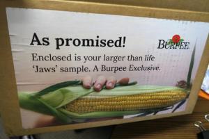 corn jaws aug (1)