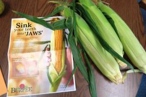 corn jaws aug (2)