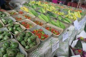 farmers market aug16 (1)