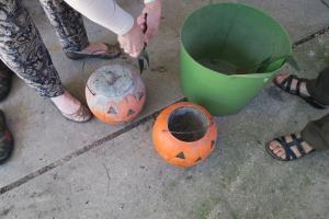 concrete-pumpkins-2