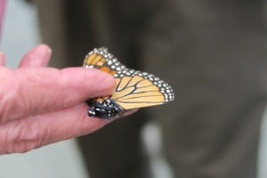 monarchs-advanced-class-paragould-16-35
