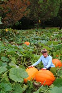 pumpkins-with-debbie-oct16