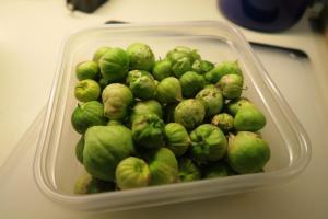 tomatillos-16-2
