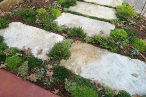 thyme-stepping-stones-2