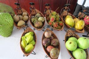 fruit-tasting-4