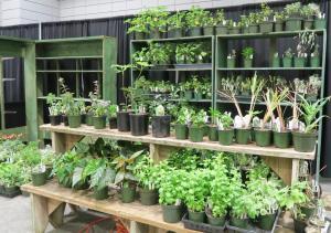 herbs-afgs-setup-wed-17-13