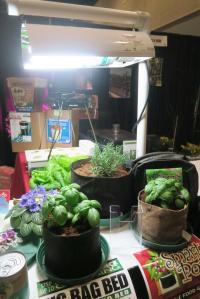 hydroponics-afgs-sat-17-19